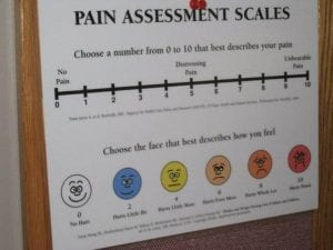 pain.scale