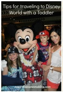 WDW-travel with toddler