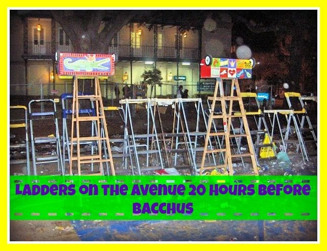 Mardi Gras Ladder | New Orleans Moms Blog
