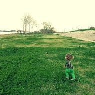 max on the levee cross process
