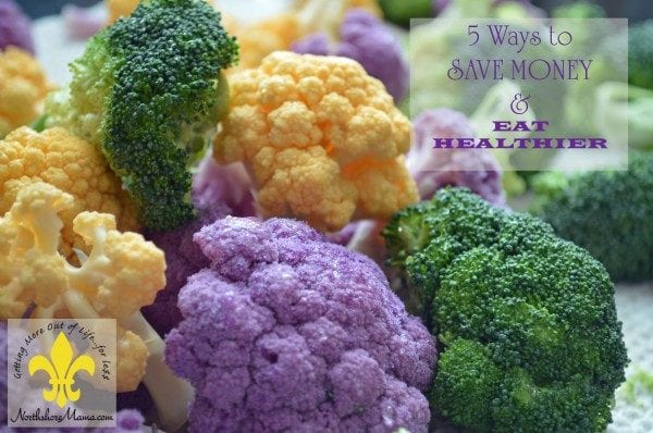 5 Ways to Save Money & Eat Healthier {Guest Post by Northshore Mama}