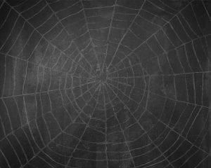 nomb_chalkboard_spiderweb_background copy