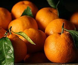 satsuma-mandarin-oranges