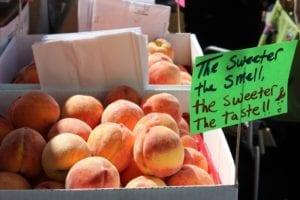 peaches-1329026_1280