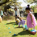 Don't Miss the NOMA Egg Hunt and Family Festival