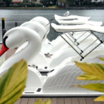 The Latest in New Orleans Family Fun :: Wheel Fun Rentals Now Offering Swan Boats