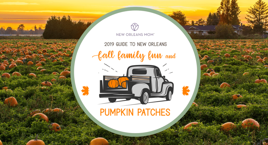 2019 Guide To New Orleans Area Pumpkin Patches