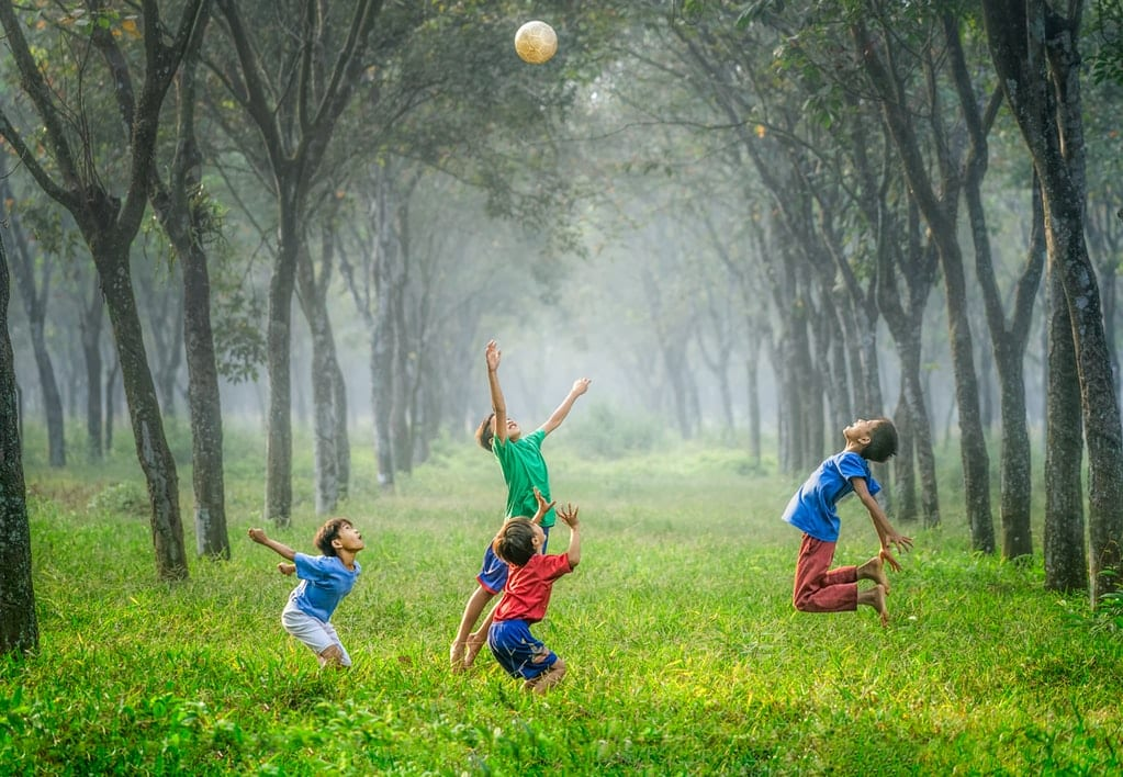 kids playing ball in field with trees
