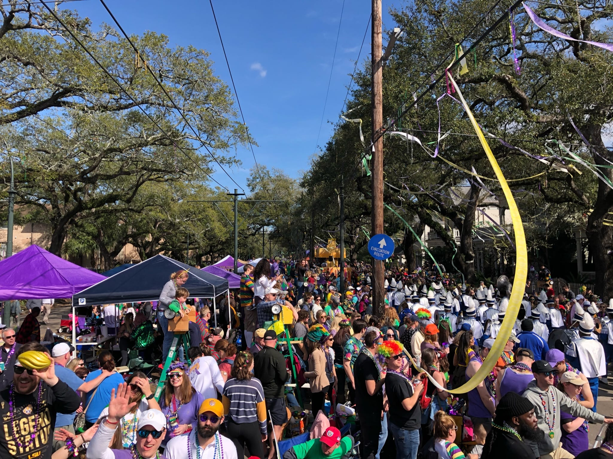 crowd of people on St. Charles during Mardi Gras
