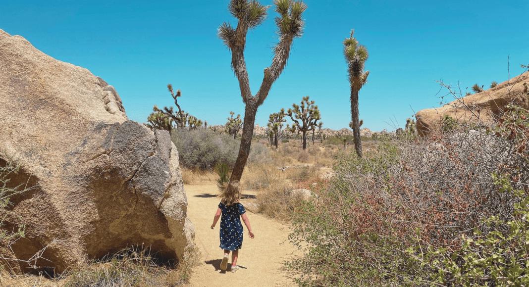 Visit National Parks with Children