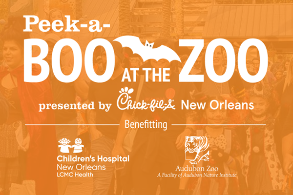 Halloween Events New Orleans